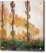 Poplars, Autumn Acrylic Print