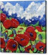 Poppies 003 Acrylic Print