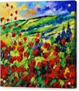 Poppies 78 Acrylic Print