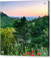 Poppies And The Alhambra Palace Acrylic Print