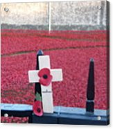 Poppies At Tower Of London Acrylic Print