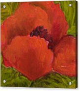 Poppies Diptych A Acrylic Print by Rita Bentley