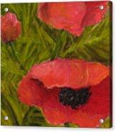 Poppies Diptych B Acrylic Print by Rita Bentley