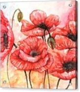 Poppies Fantasy Acrylic Print