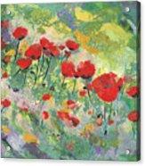 Poppies field Acrylic Print