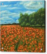 Poppies Field Original Painting Acrylic Print