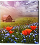 Poppies In A Dream Acrylic Print