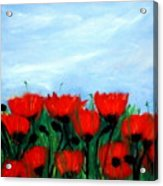 Poppies In A Field Acrylic Print