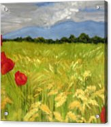 Poppies In A Wheat Field Acrylic Print