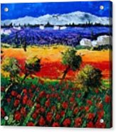 Poppies In Provence Acrylic Print
