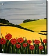 Poppies In The Hills Acrylic Print