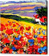 Poppies In The Spring Time.  Acrylic Print