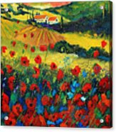 Poppies In Tuscany Acrylic Print