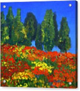 Poppies Landscape Acrylic Print