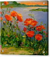 Poppies Near The River Acrylic Print