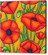 Poppies Under The Tuscan Sun Acrylic Print
