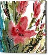 Poppy Blush Acrylic Print