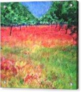 Poppy Field II Acrylic Print
