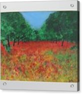 Poppy Field In Ibiza Acrylic Print