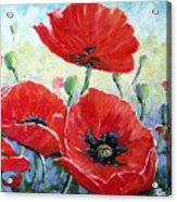Poppy Love Floral Scene Acrylic Print