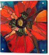 Poppy Passion Acrylic Print