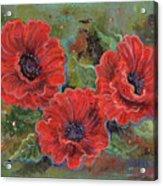 Poppy Splendor Acrylic Print