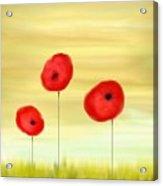 Poppy Sunset Acrylic Print