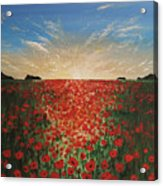 Poppy Sunset Acrylic Print