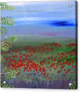 Poppy Valley Acrylic Print by Jamie Hartley