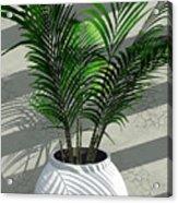 Porch Plant Acrylic Print