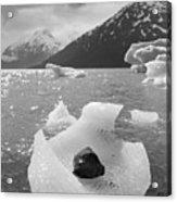 Portage Glacier, Ice Basket Acrylic Print