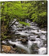 Porters Creek Acrylic Print