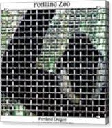Portland Zoo Acrylic Print