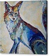 Portrait Of A Fox Acrylic Print