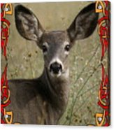 Portrait Of Bambi Acrylic Print