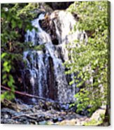 Portrait Of Houston Brook Falls Acrylic Print