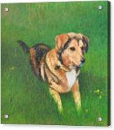 Portrait Of Kecia Acrylic Print
