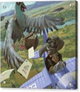 Postal Bird Acrylic Print by Martin Davey
