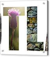 Postcard For Scotland Acrylic Print