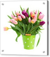 Pot Of Pink And Violet Tulips Acrylic Print
