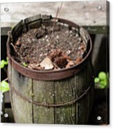 Pot Waiting For New Plant Acrylic Print