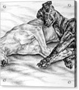 Potato Chips - Two Greyhound Dogs Print Acrylic Print