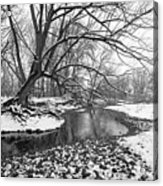 Poudre Black And White Acrylic Print by James Steele