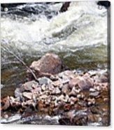 Poudre River 5 Acrylic Print