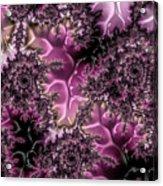 Powder Pink Black Gloss Fractal  Acrylic Print