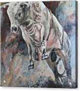 Power Of The Bull Acrylic Print