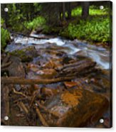Powerful Spring Runoff Acrylic Print