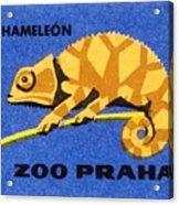 Prague Zoo Chameleon Matchbox Label Acrylic Print