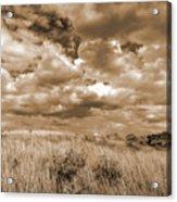 Prairie And Sky Acrylic Print