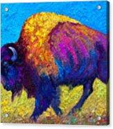 Prairie Dusk Acrylic Print